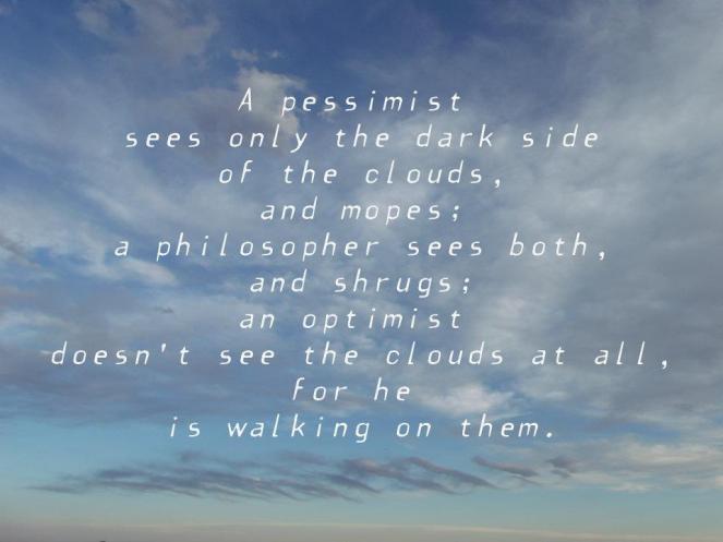 The Pessimist